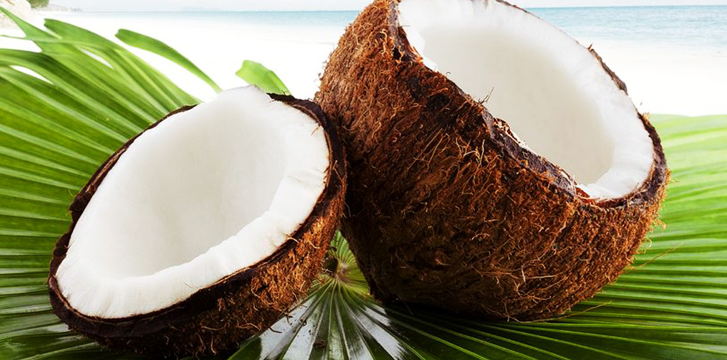 Victory Coconut Industries – Coconut Malaysia » About